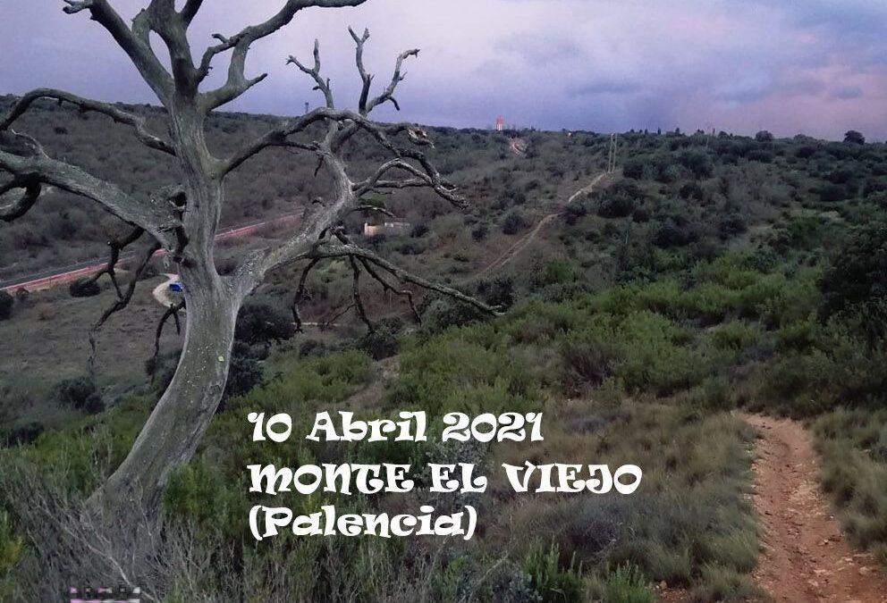 CAMPEONATO AUTONÓMICO DE TRAIL RUNNING DE PROMOCIÓN
